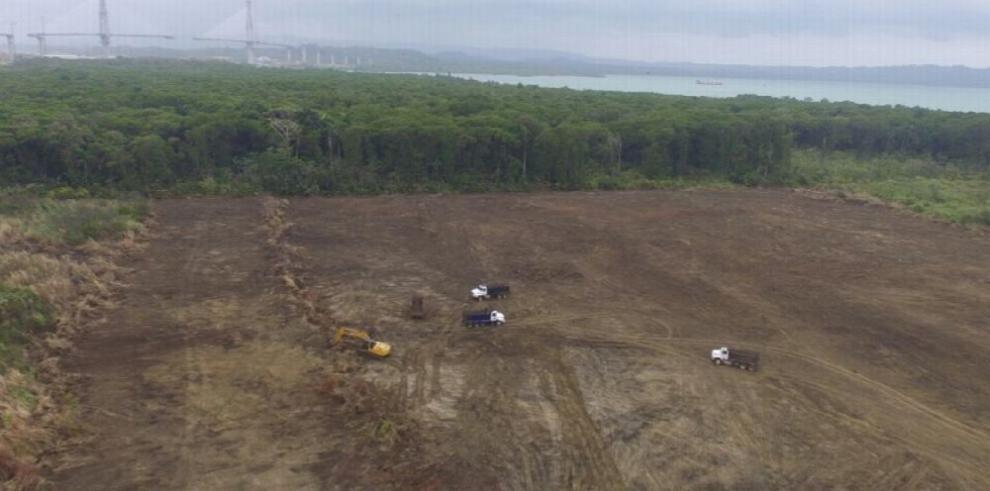 NG Power arranca millonaria obra para generar energía
