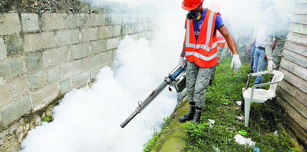San Miguelito tiene alto índice de infestación del mosquitoAedes aegypti