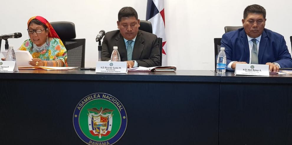 Asamblea Nacional Comisión Indígena 2019