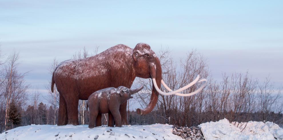 Un exceso de humedad motivó las extinciones masivas de la megafauna