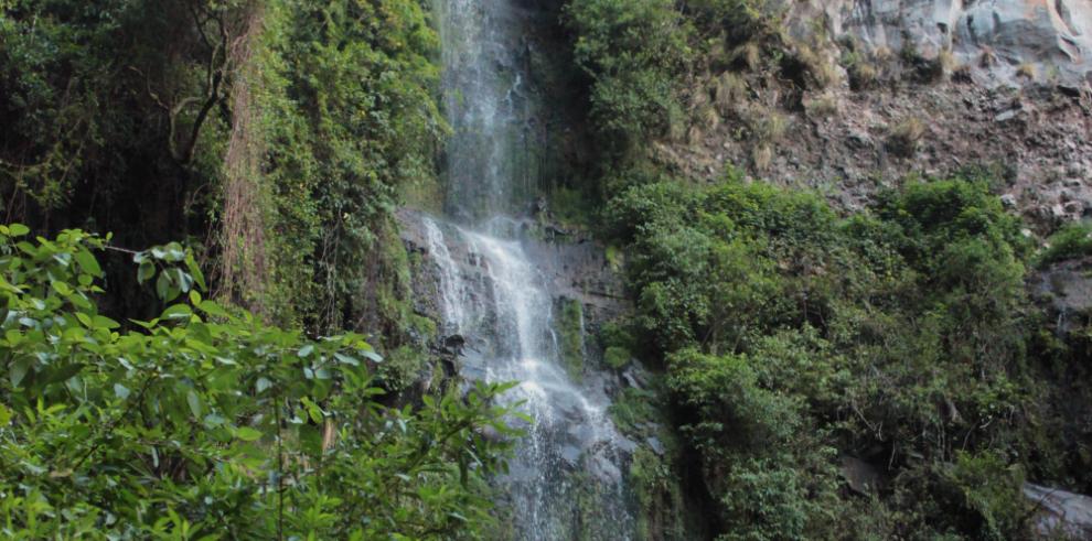 Costa Rica crea el Día Nacional de las Reservas de la Biosfera