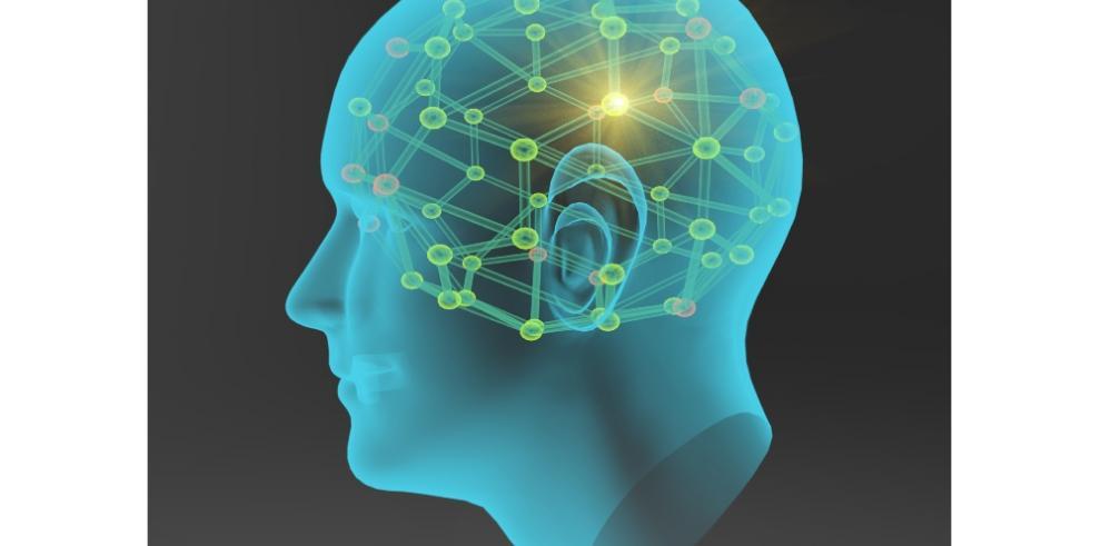 Cuba, Canadá y China se unen para trazar el mapa del cerebro humano