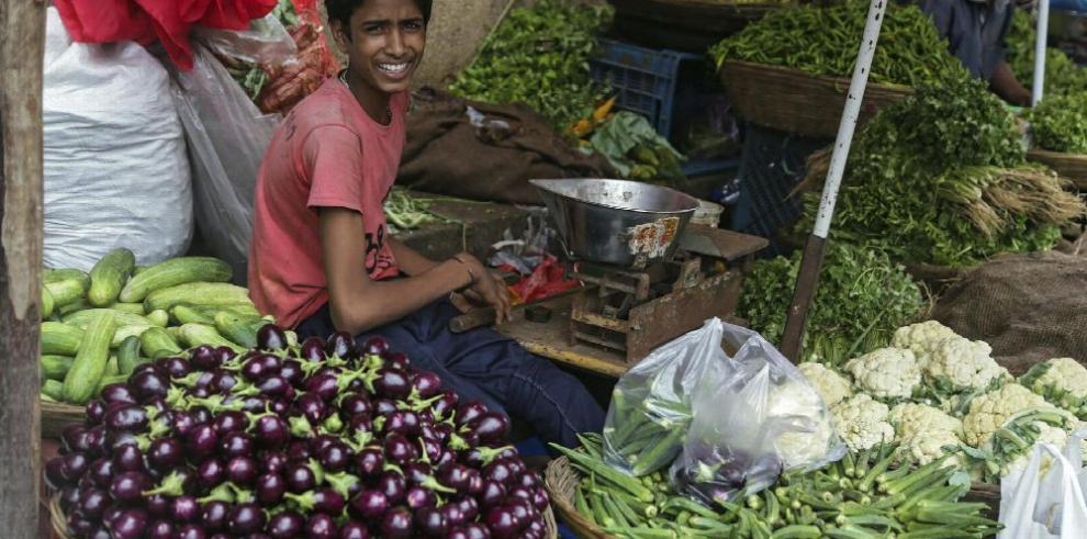 Instan a evitar el empleo infantil en crisis humanitaria