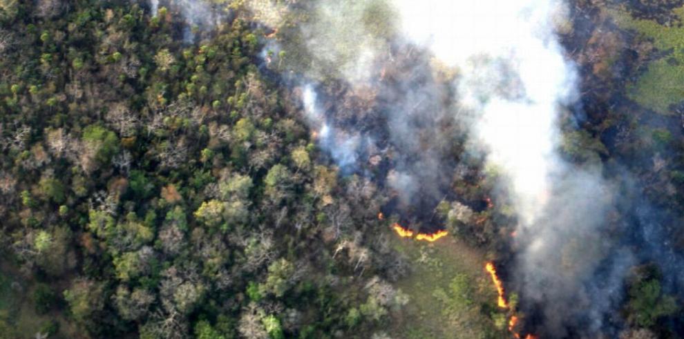 Presidente de Guatemala visita áreas protegidas afectadas por incendios