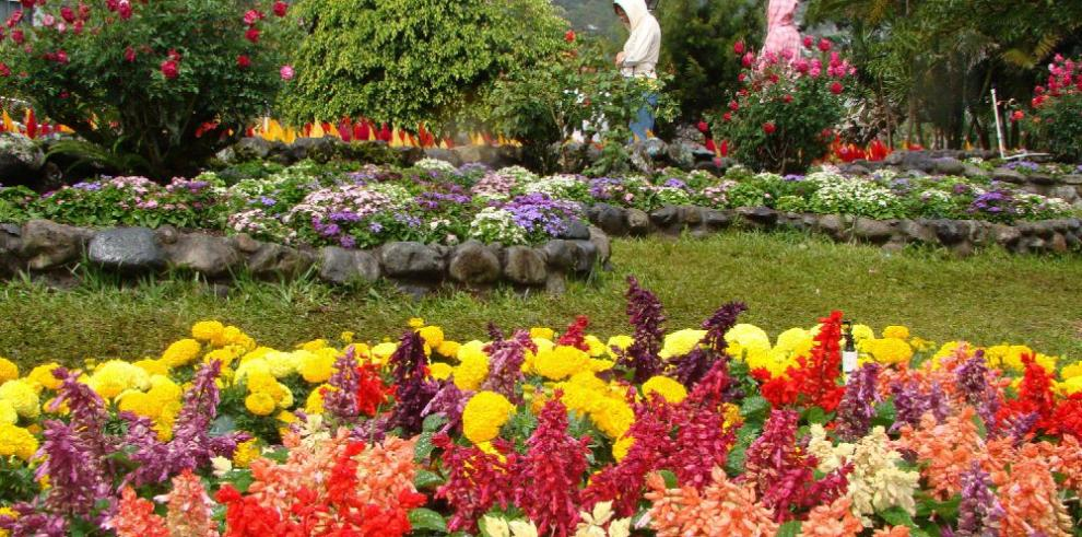 Todo listo para la Feria de las Flores y el Café