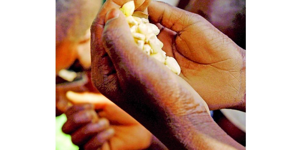 FAO acuerda hoja de ruta para erradicar hambre y pobreza en Centroamérica