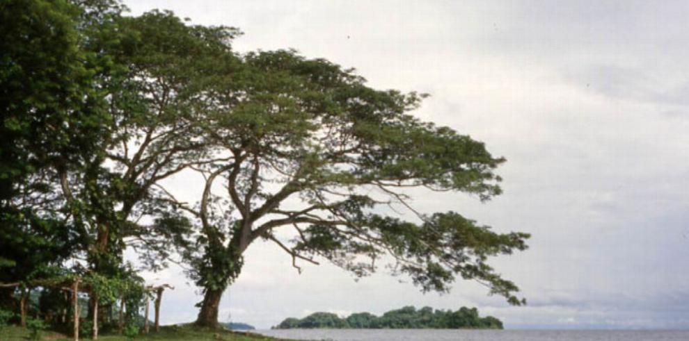 Reserva natural es afectada por la expansión ganadera