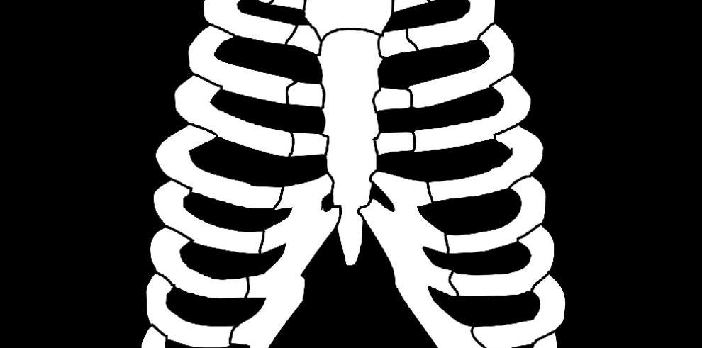 El tórax de los neandertales estaba adaptado para conseguir más oxígeno