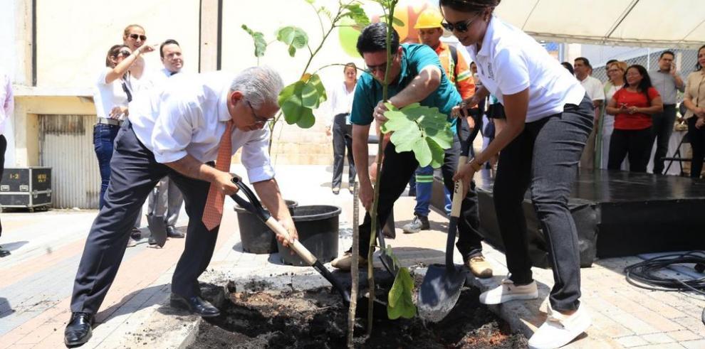 Acaldía de Panamá arranca con el programa de arbolización en la ciudad