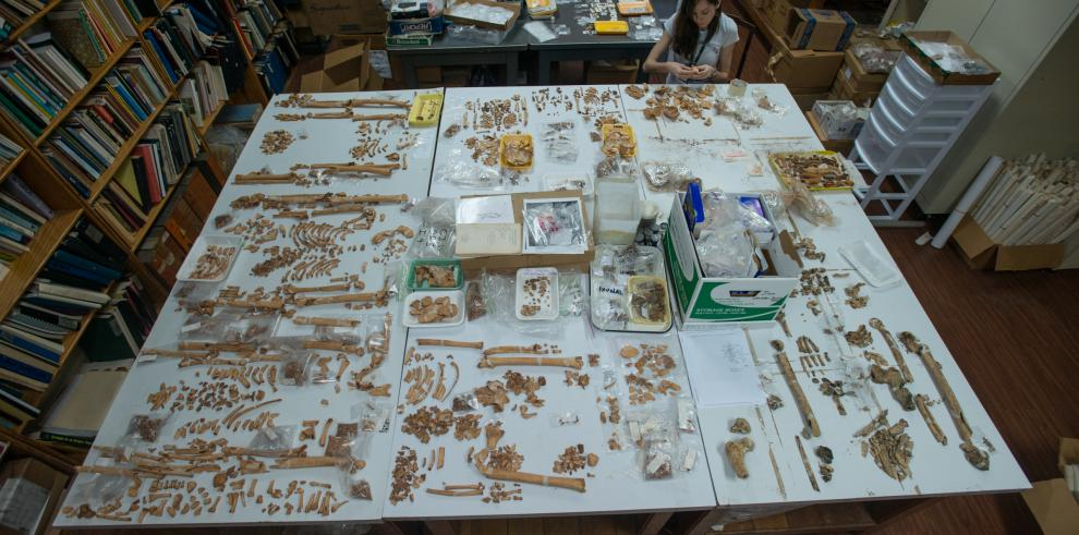 Hallan en Panamá primera osamenta humana antigua con cáncer