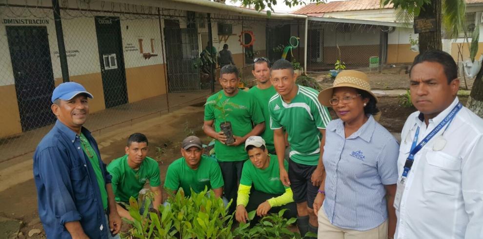 Entregan 80 plantones del programa Sembrando Paz-Reforestando Vidas a Meduca