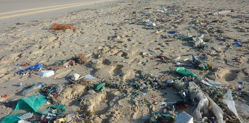 El ser humano convirtió el mar en un basurero, afirma presidenta WWF