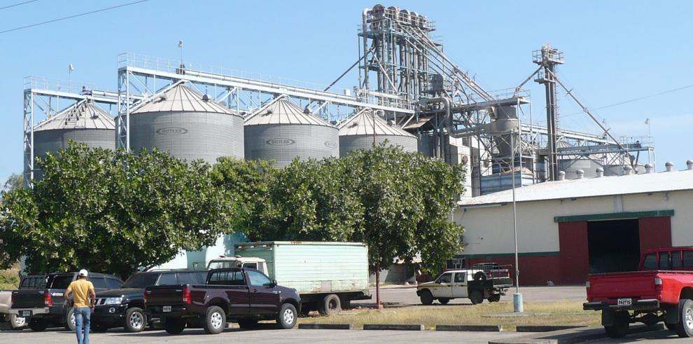 Gobierno ha comprado $70 millones en arroz nacional, De La Guardia