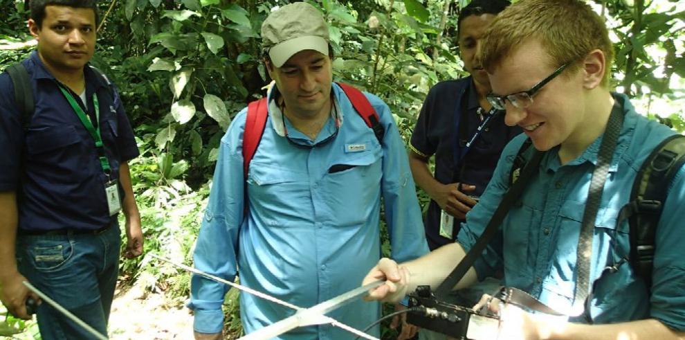 Panamá, laboratorio de éxito para proyecto de rescate de anfibios