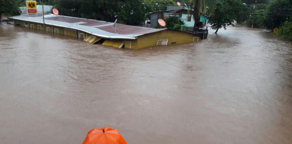 Gobierno de Costa Rica advierte presencia de cocodrilos por crecida de ríos