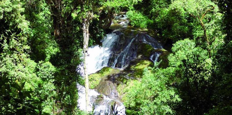 Una reserva natural dominicana enfrenta a campesinos y autoridades
