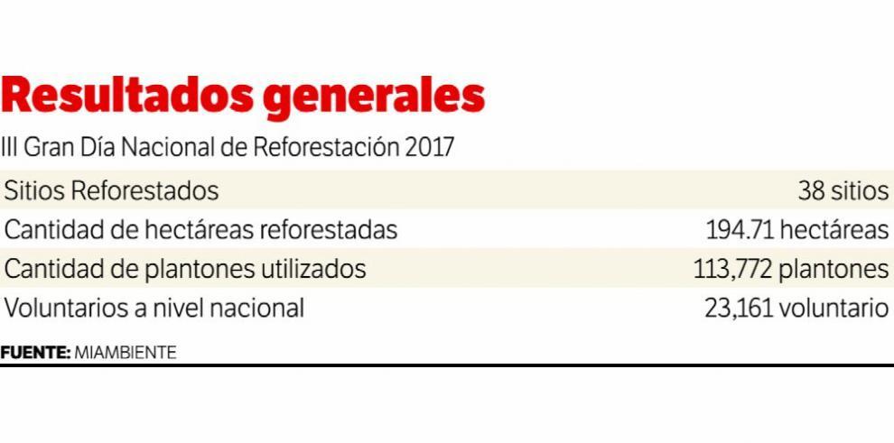 En tres días, 371 hectáreas han sido reforestadas en todo el país