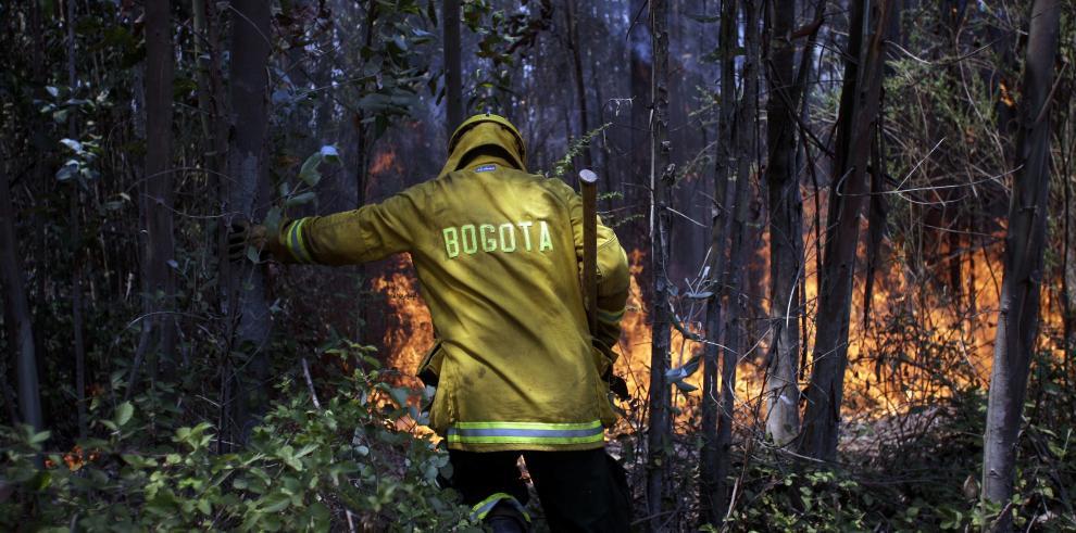 Un total de 44 incendios forestales se mantienen activos en Chile