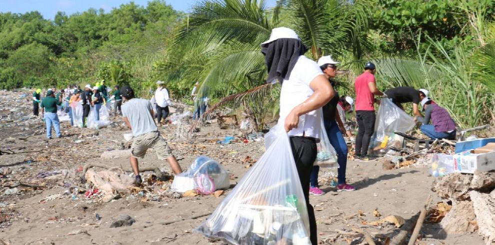Estudiantes recogen basura en la playa