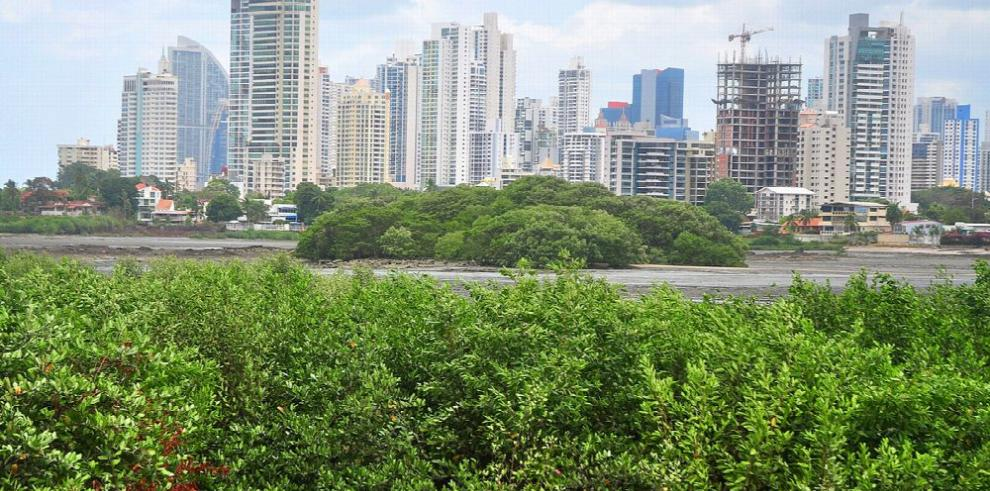 Panamá cuenta con una guía para mejorar la gestión marino-costera