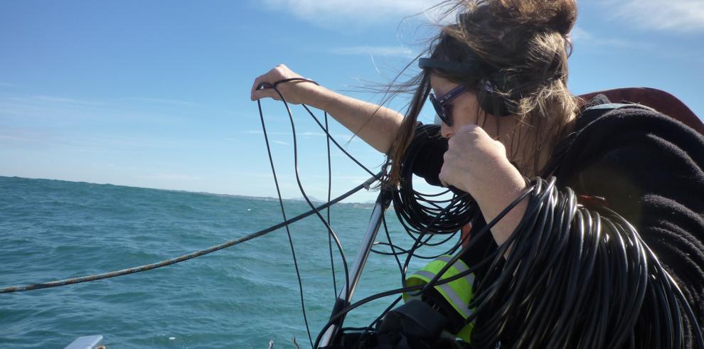 Contaminar el mar de forma acústica es condenarlo, según un experto