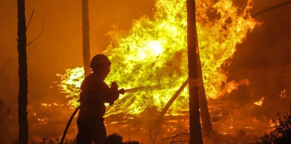 Incendio causa 61 muertos en Portugal