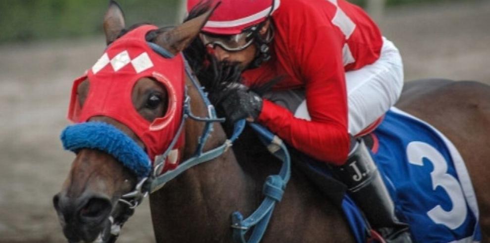 Trece equinos en el Clásico del Caribe