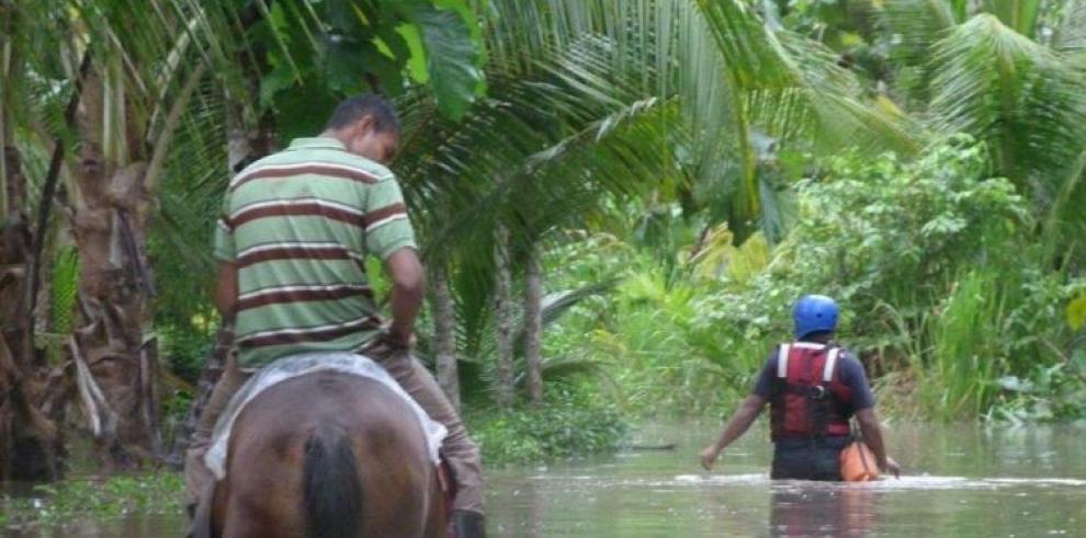 Destinan $8.6 millones para reforestar cinco cuencas 'prioritarias'