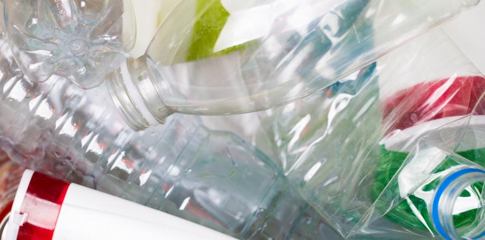 Documentan por primera vez la entrada de plástico en cadena alimentaria terrestre