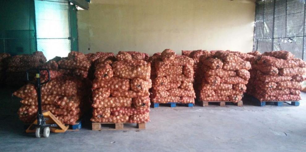 IMA ha comprado 13,500 quintales de cebolla a productores de Coclé