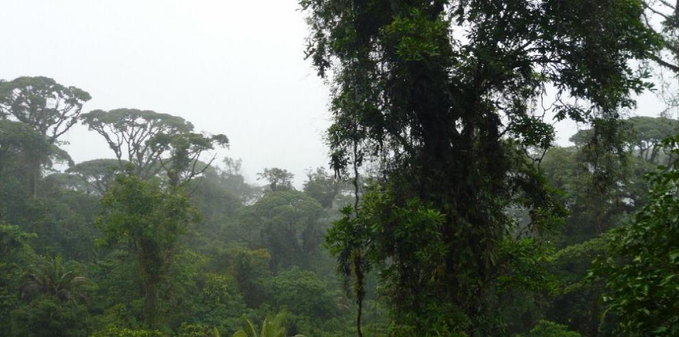 El patrimonio agrícola preserva la biodiversidad