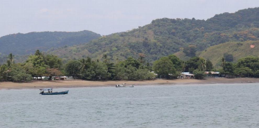 Científicos estudian crear una zona de pesca especial en Pixvae