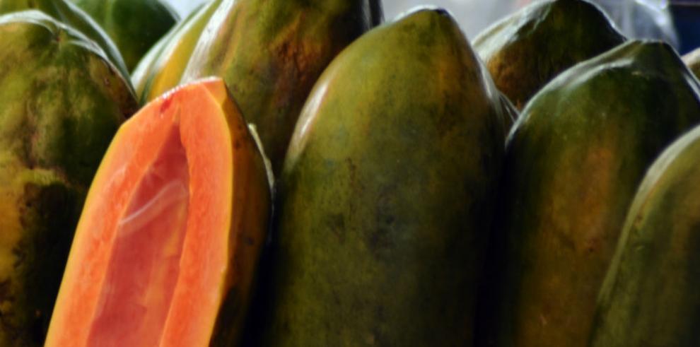 Papaya panameña se comercializará en Europa con el sello de 'Panamá Exporta'