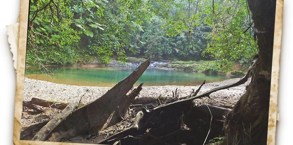 Boquerón para principiantes, el río camino