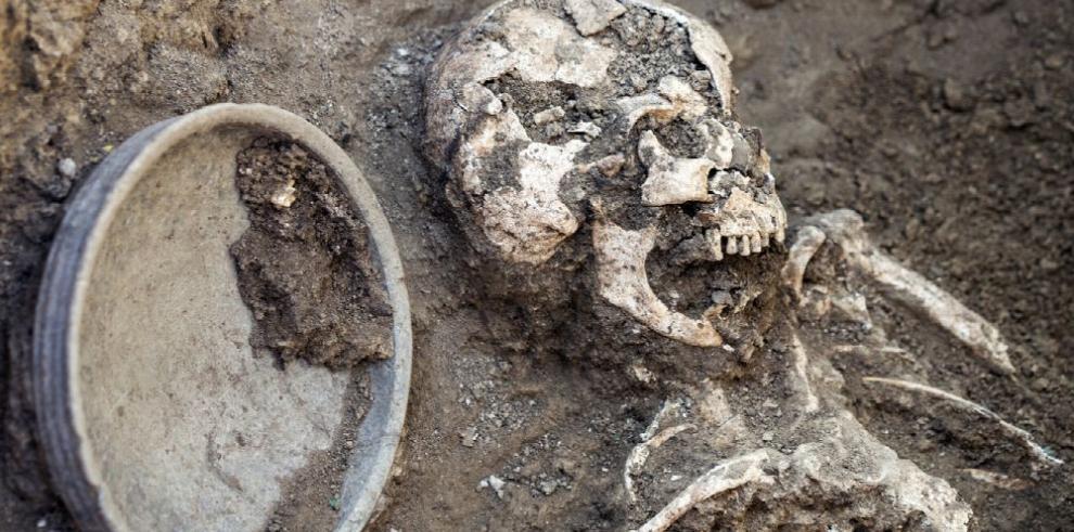 Fósiles cambiaron relato del origen humano