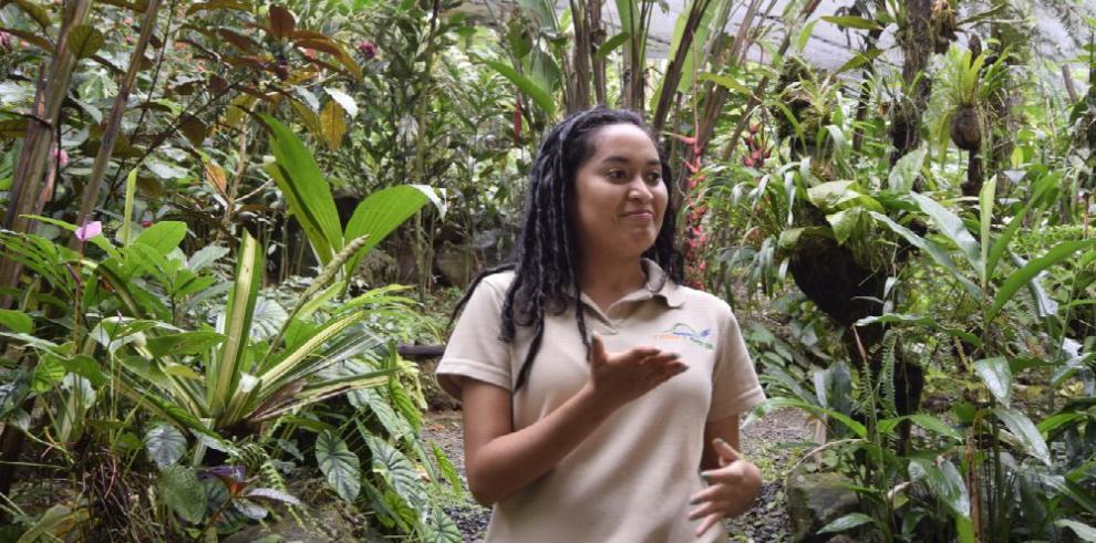 Panamá, la tierra de las mariposas