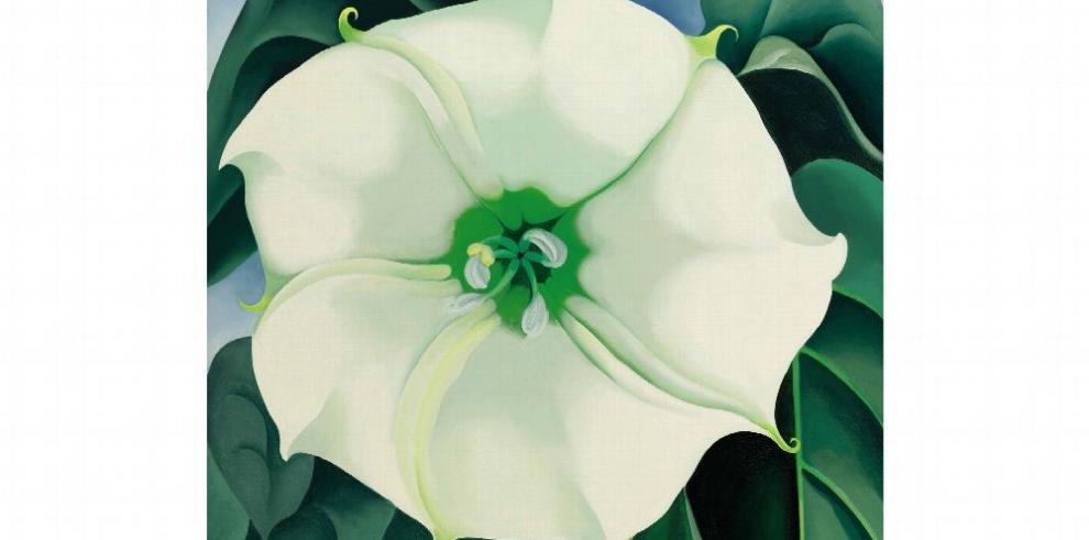 El misterio floral de O'Keeffe