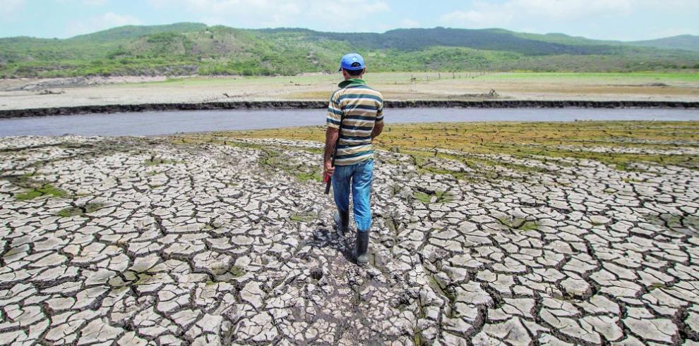 Miles de nicaragüenses buscan agua hasta bajo las piedras