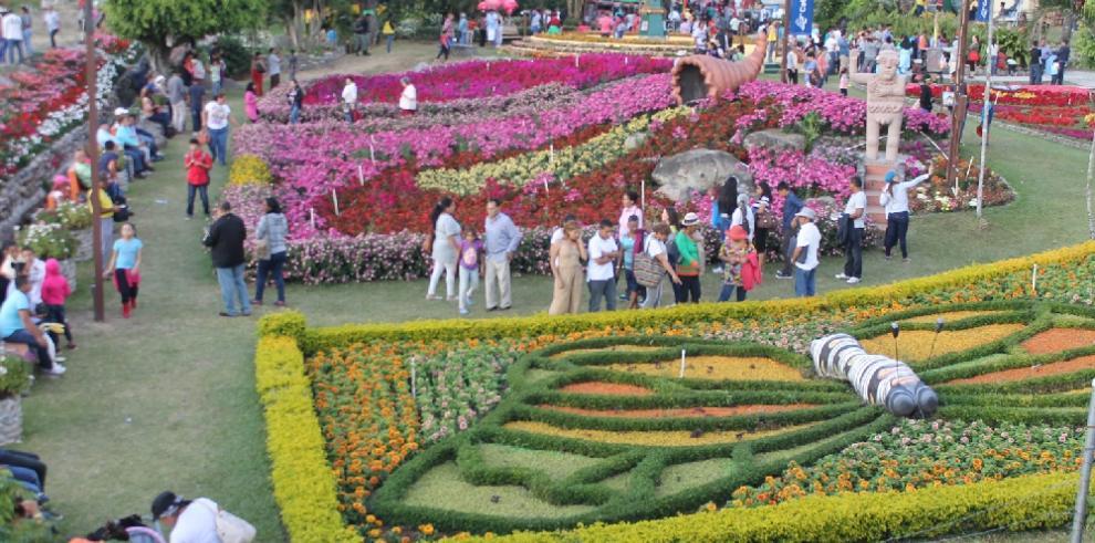 Boquete sigue recibiendo a visitantes en la Feria de las Flores