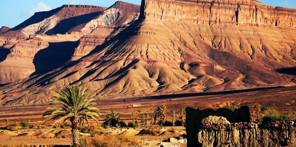 Encuentran restos de dinosaurios en Marruecos