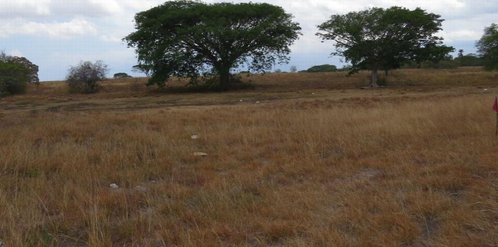 Minsa obtiene terreno para construir hospital en Penonomé