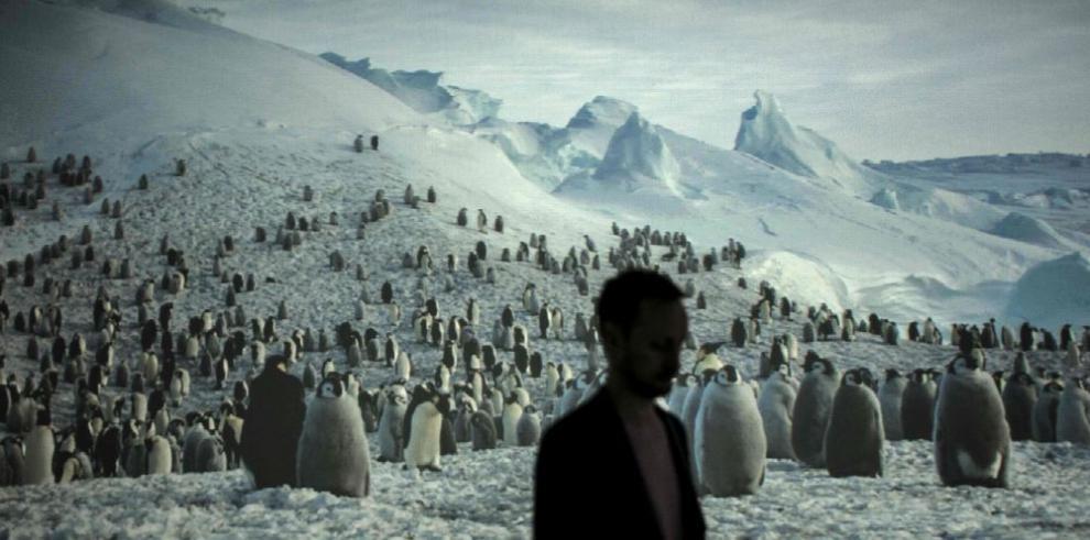 Se reúnen para analizar situación de la Antártica