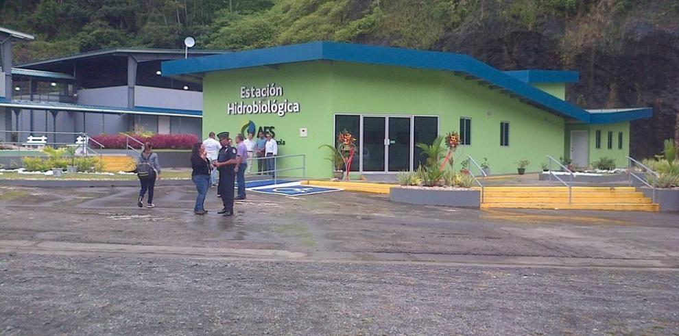 Changuinola, el laboratorio para la reproducción de la fauna acuática