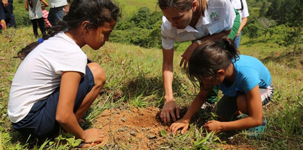 Reforestarán más de 2 mil hectáreas