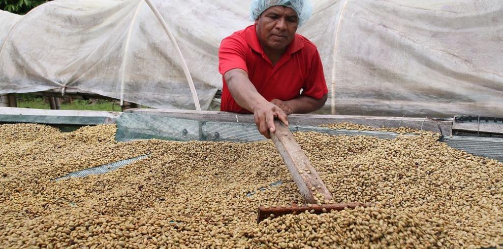 Caficultores negocian con Café Durán