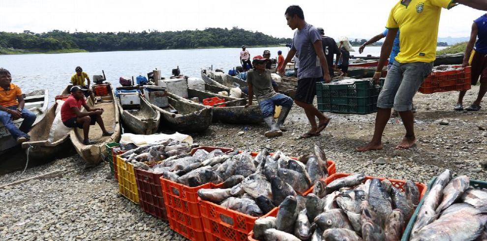 Tratado contra la pesca ilegal