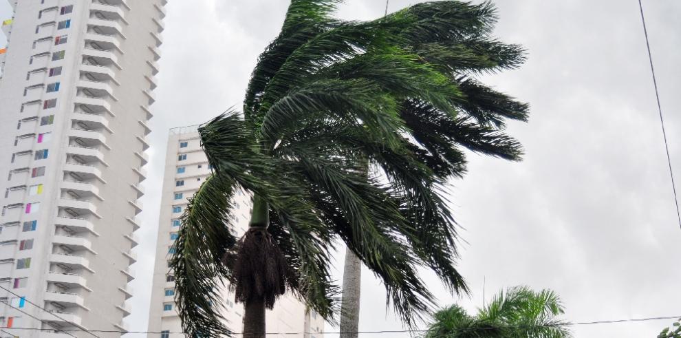 Sinaproc da aviso sobre fuertes vientos a partir de hoy