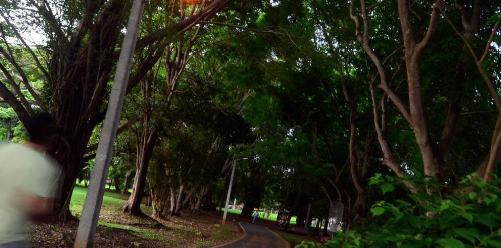 Analizan implementar la póliza de responsabilidad ambiental en Panamá