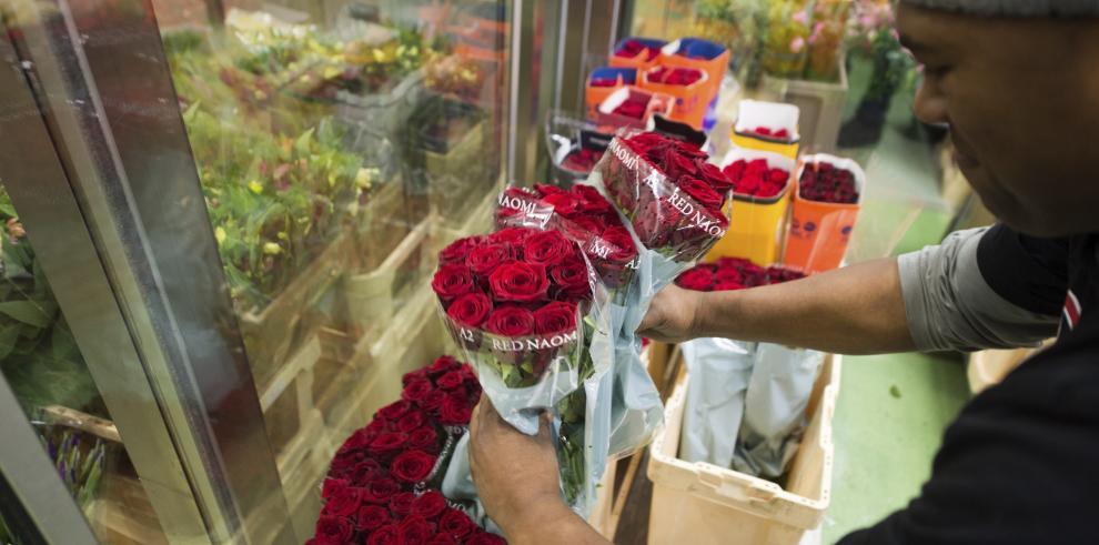 Flores inundan EEUU para San Valentín, pero con ellas llegan los bichos