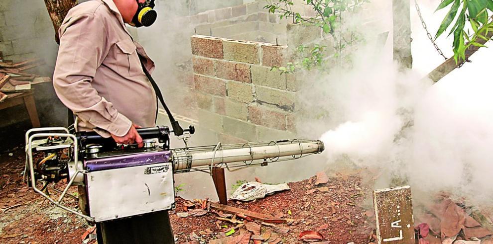 Proliferan los criaderos de Aedes aegypti, a pesar de las advertencias
